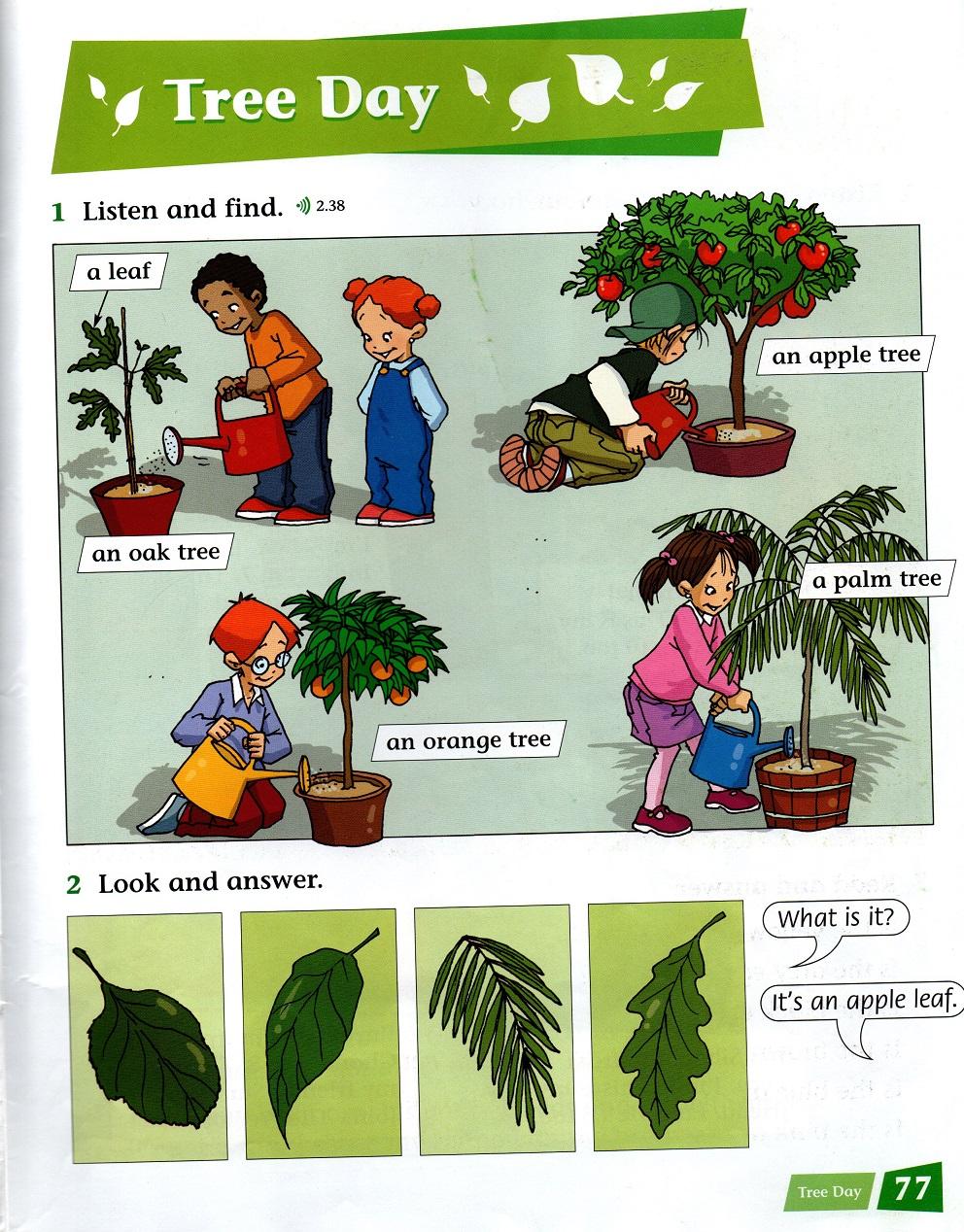 Tree Day, Incredible English 2, OUP